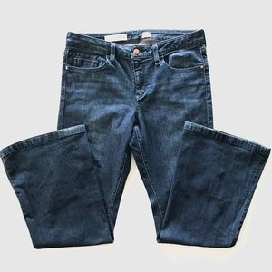 Pilcro and the Letterpress Stet Flare Jeans 32p
